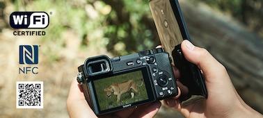 α6600 premium E-mount APS-C fotoğraf makinesi ürününün fotoğrafı