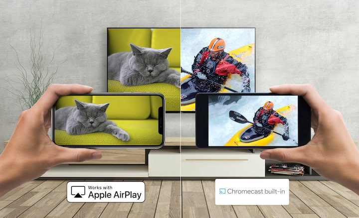 İki akıllı telefon, bir kediyle kanocunun görüntüsünü Apple AirPlay ve Chromecast üzerinden Sony TV'ye yansıtıyor