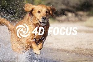 4D FOCUS Fotoğraf Makinesi Ayar Kılavuzu