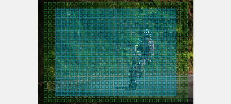 AF sensör bölgeleri neredeyse görüntünün tamamını kapsar